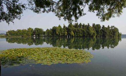 """A Novembre nuovi appuntamenti su lago di Pusiano: destinazione """"Isola dei Cipressi"""""""