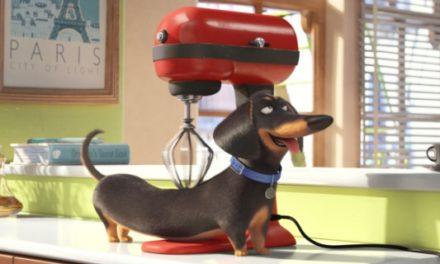 """Al """"Palladium"""" arriva un nuovo appuntamento per tutti i bambini: """"Pets – Vita da animali"""""""