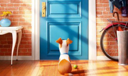 """Lecco & il suo """"Cinema in Piazza"""": questa sera arriva Pets!"""