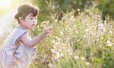Al Giardino Botanico di Calolzio nuovo appuntamento per bambini
