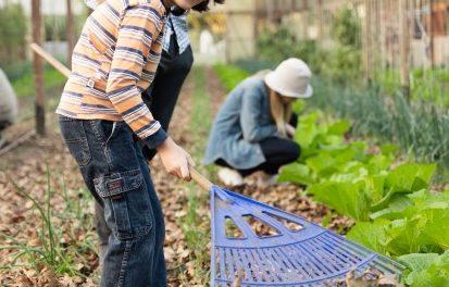 """Piccoli giardinieri crescono al """"Parco Ludico"""": nuova Ludofficina!"""