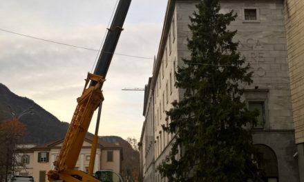FOTO | Natale in centro Lecco, ci siamo! Ecco l'albero di Piazza Garibladi