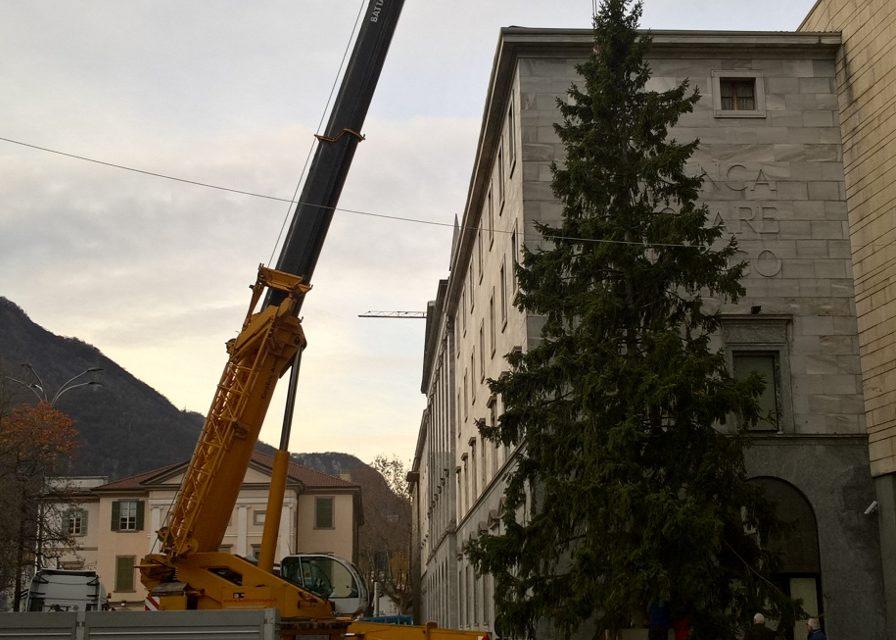 FOTO   Natale in centro Lecco, ci siamo! Ecco l'albero di Piazza Garibladi