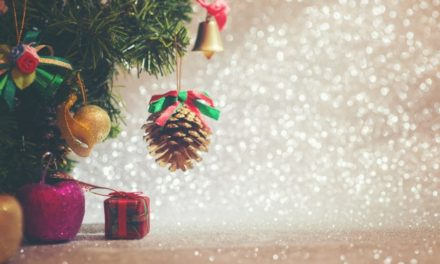 Parco Ludico di Galbiate: una due giorni in tema natalizio
