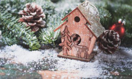 """Un altro week-end di divertimento alla """"Casa di Babbo Natale"""" di Primaluna"""