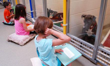 Fiabe in canile: ecco come i bambini aiutano i cani al contatto umano