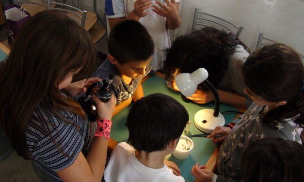 MILANO, PALAZZO REALE: LABORATORI PER FAMIGLIE CON BAMBINI