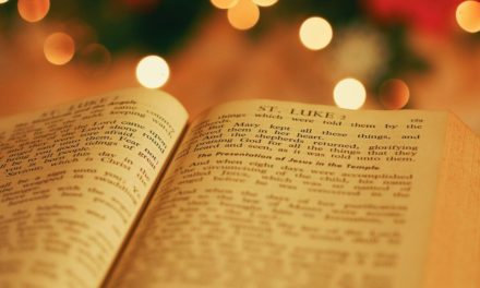 """BIBLIOTECA DI MALGRATE """"MOMENTI MAGICI IN BIBLIOTECA"""""""