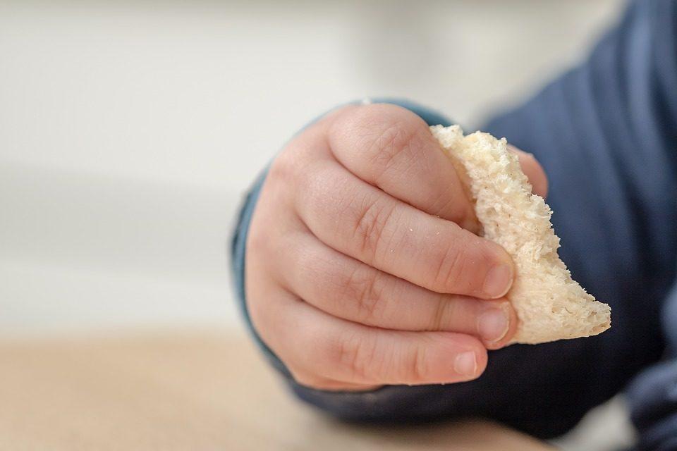 NIBIONNO, ARCA DI NOAH: INCONTRO SULL'ALIMENTAZIONE E NUTRIZIONE 1-3 ANNI